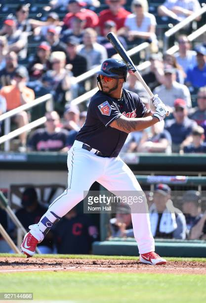 Bobby Bradley of the Cleveland Indians gets ready in the batters box during a spring training game against the Texas Rangers looks on at Goodyear...