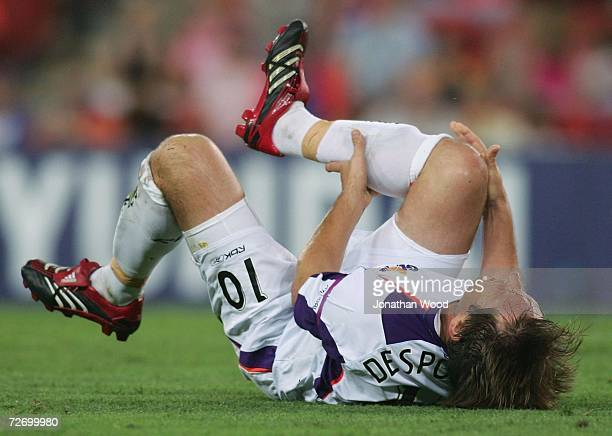 Bobby Despotovski of the Glory is injured during the round 15 Hyundai ALeague match between the Queensland Roar and the Perth Glory at Suncorp...