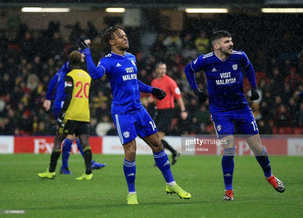 Watford FC v Cardiff City - Premier League : Foto jornalística