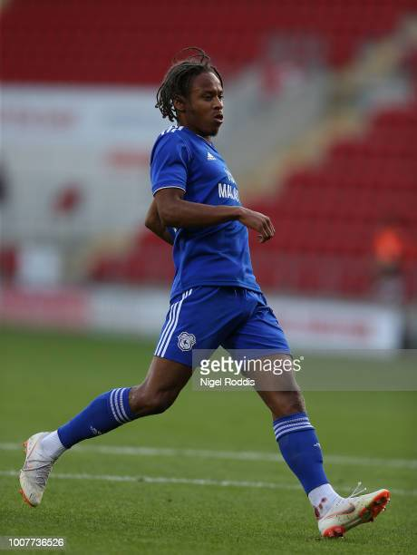 Bobby Reid of Cardiff City during the at PreSeason Friendly match between Rotherham United and Cardiff City at The New York Stadium on July 25 2018...