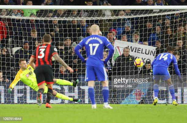 Bobby Reid of Cardiff City scores his team's first goal from the penalty spot past Artur Boruc of AFC Bournemouth during the Premier League match...
