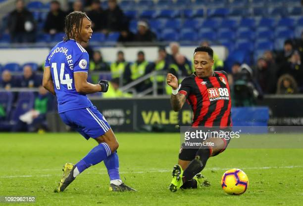 Bobby Reid of Cardiff City scores his team's second goal during the Premier League match between Cardiff City and AFC Bournemouth at Cardiff City...