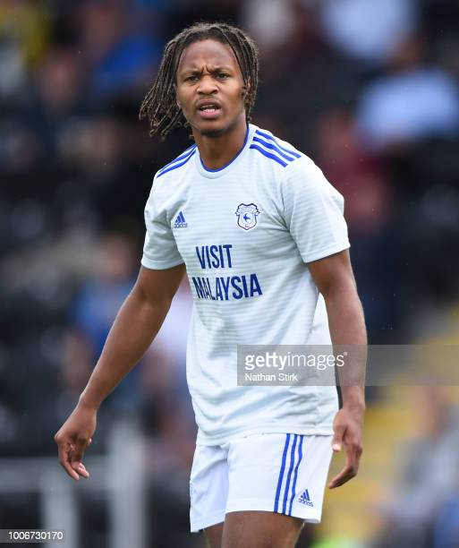 Bobby Reid of Cardiff looks on during the preseason friendly match between Burton Albion and Cardiff City at Pirelli Stadium on July 28 2018 in...