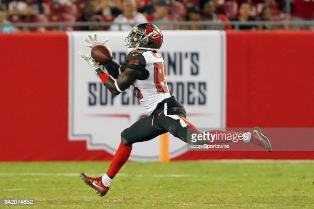 Bobo Wilson of the Buccaneers pulls in a long bomb of a catch during the NFL Preseason game between the Washington Redskins and the Tampa Bay...