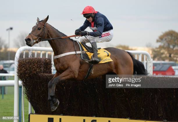 Bobs Worth and Barry Geraghty, the Cheltenham Gold Cup Winner, are well behind the leaders in the Betfair Chase during the Betfair Chase Festival at...