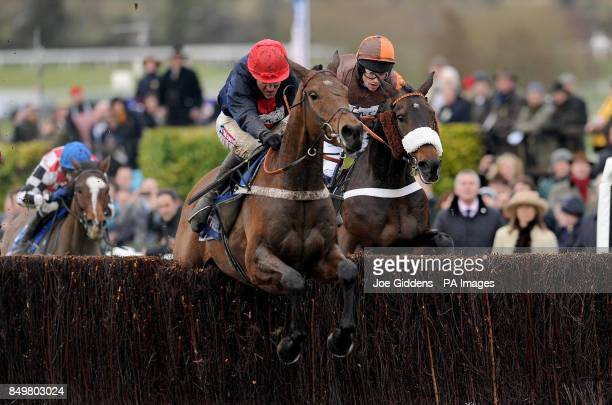 Bobs Worth ridden by Barry Geraghty goes on to win ahead of Long Run ridden by Sam Waley-Cohen in the Betfred Cheltenham Gold Cup Steeple Chase...