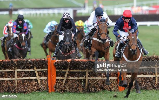 Bobs Worth ridden by Barry Geraghty on his way to winning the Albert Bartlett Novices' Hurdle on Gold Cup Day, during the Cheltenham Festival.