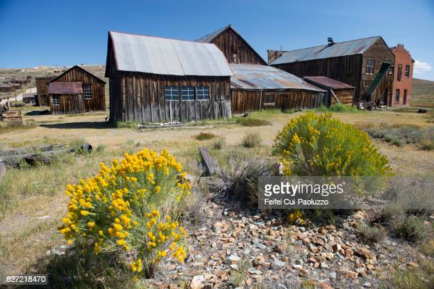 Bodie State Historic Park, Gold Mining Ghost Town, California, USA