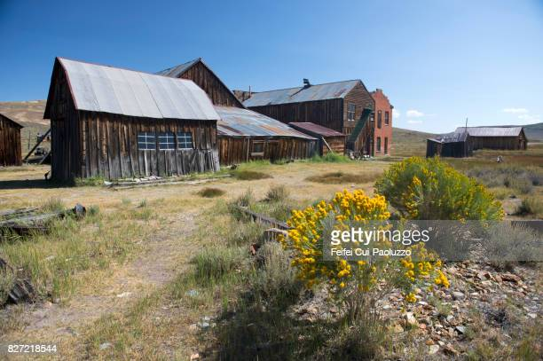 bodie state historic park, gold mining ghost town, california, usa - california gold rush stock pictures, royalty-free photos & images