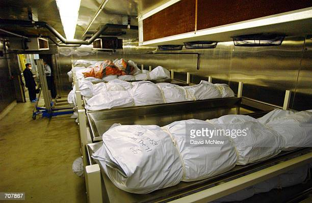 Bodies are stored in the 600 series longterm crypt at the Los Angeles County Coroners office April 16 2002 in Los Angeles CA Some coroner employees...