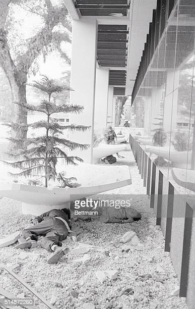 Bodies of slain VietCong terrorists lie against the wall of the US Embassy here January 31st during a Communist attack on the Embassy Terrorists...