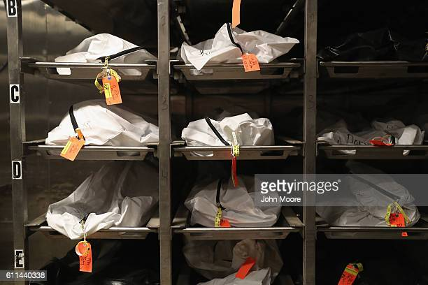 Bodies of suspected undocumented immigrants lie in the morgue the Office of the Pima County Medical Examiner on September 29 2016 in Tucson Arizona...