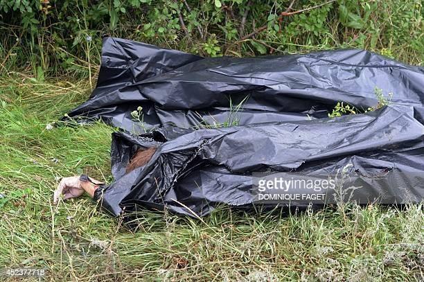 Bodies of victims wrapped in bags wait to be collected by rescuers at the site of the crash of a Malaysia Airlines plane carrying 298 people from...