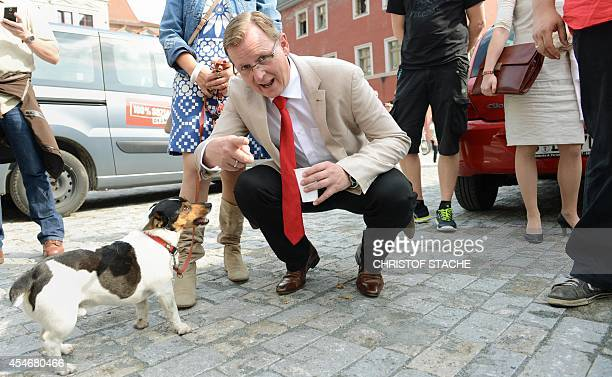 Bodo Ramelow top candidate of the German left party 'Die Linke' for the state parliament election of Thuringia poses with his dog Attila beside an...