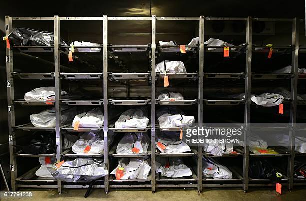 TOPSHOT Body bags in the morgue at the Pima County medical examiner's office containing the remains of the dead including some of those who died...