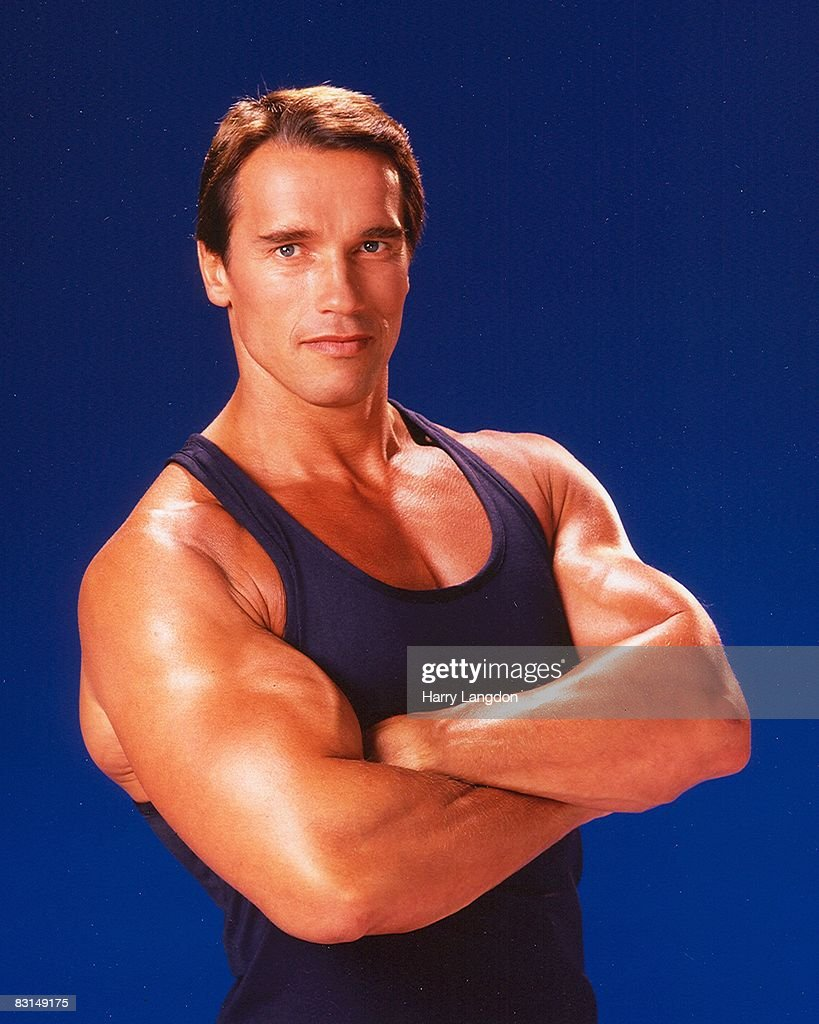 Arnold Schwarzenegger Portrait Session : News Photo