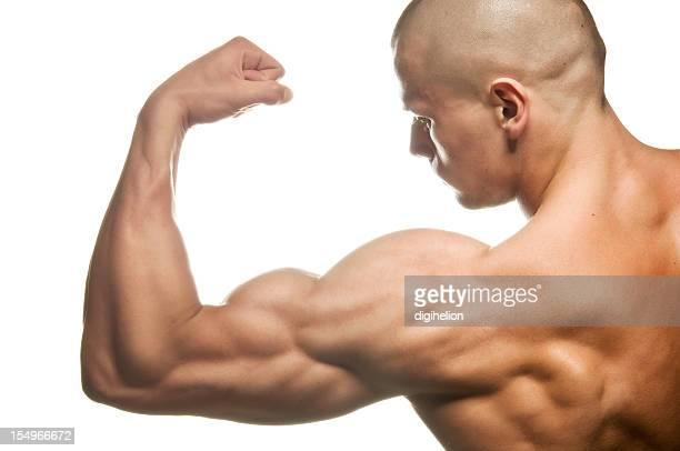 Body builder flexing biceps on white