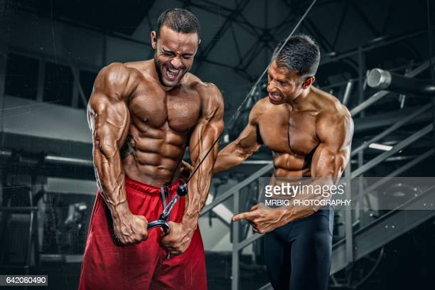 Body Builders Workout at the Gym