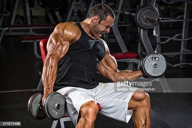 body building in progress - handsome bodybuilders stock pictures, royalty-free photos & images