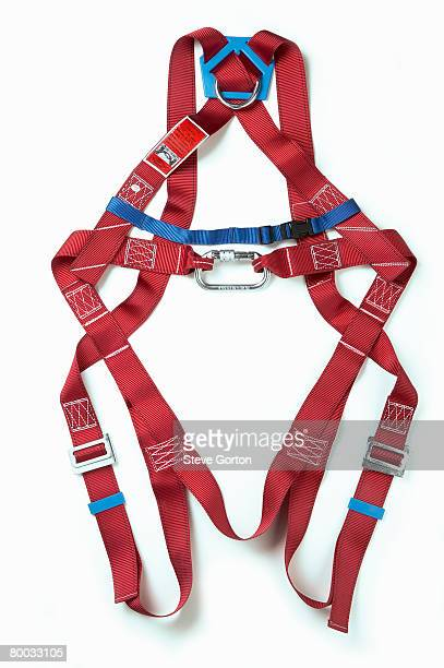 body harness - ファッションアイテム ボディーハーネス ストックフォトと画像