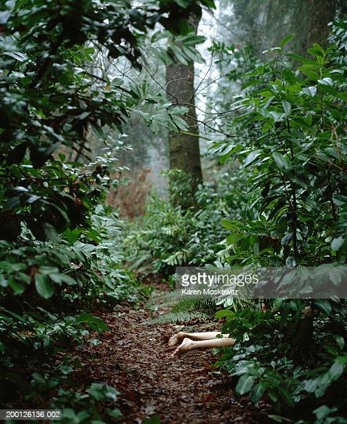 body of dead woman lying in woods, low section, elevated view - crime and murder stock pictures, royalty-free photos & images