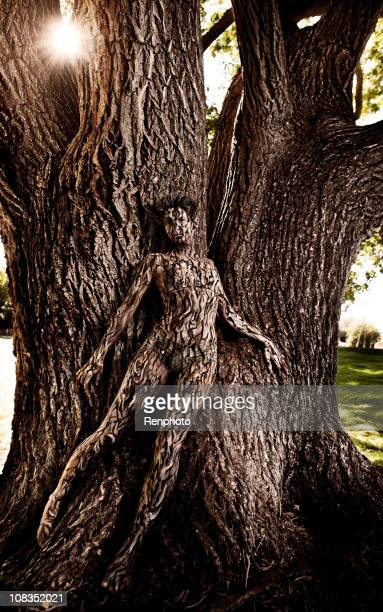 body painting: tree camouflage - body paint stock pictures, royalty-free photos & images