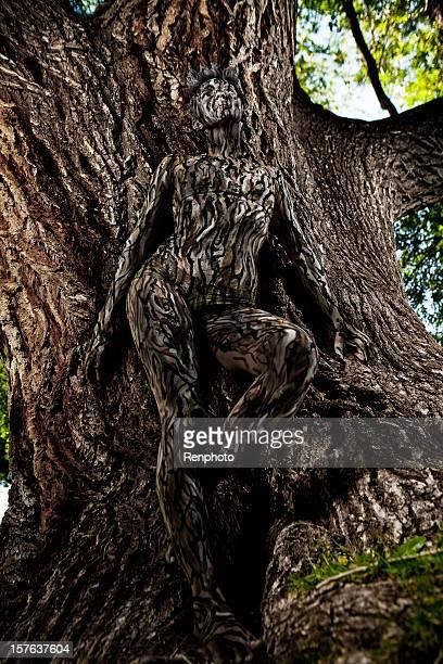 pintura de cuerpo: árbol camuflaje - cuerpo pintado fotografías e imágenes de stock