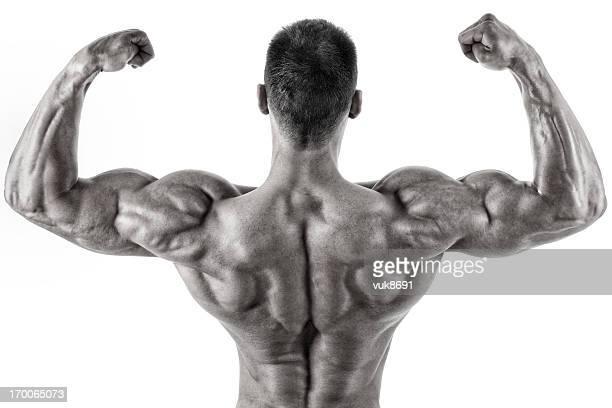 cuerpo la perfección - hombre desnudo fondo blanco fotografías e imágenes de stock