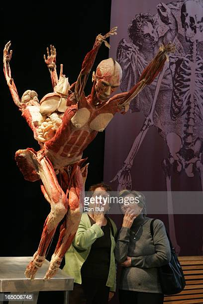 Body Worlds 2 RB03 01 19 06 New addition to the popular exhibit at the science Centre is the Head Diver pic of exhibit description enclosed in this...