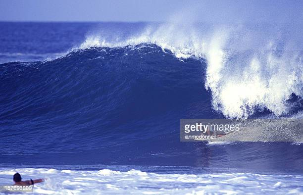 bodyboard rides a large tropical wave