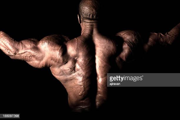 bodybuilder - bodybuilding stockfoto's en -beelden