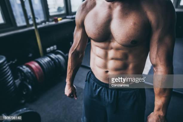 músculos abdominais fisiculturistas - preocupação com o corpo - fotografias e filmes do acervo