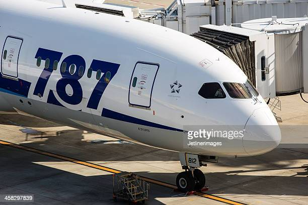 Boeing 787 Dreamliner-All Nippon Airways
