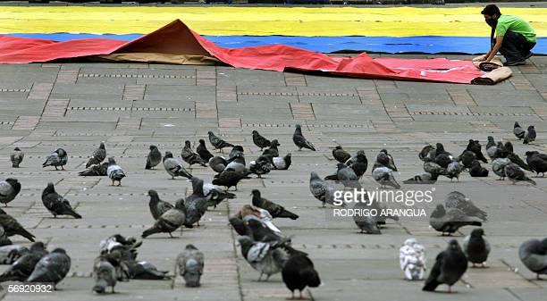 Un joven extiende una bandera colombiana el 23 de febrero de 2006 en la Plaza de Bolivar en Bogota Colombia La candidata presidencial Ingrid...