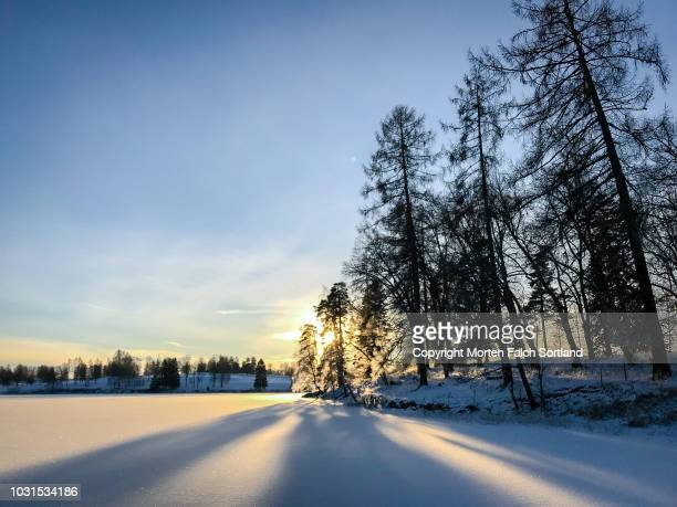 bogstad lake in winter - winter solstice stock pictures, royalty-free photos & images