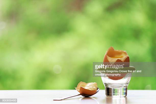 a boiled egg in an egg cup - gregoria gregoriou crowe fine art and creative photography. stock-fotos und bilder