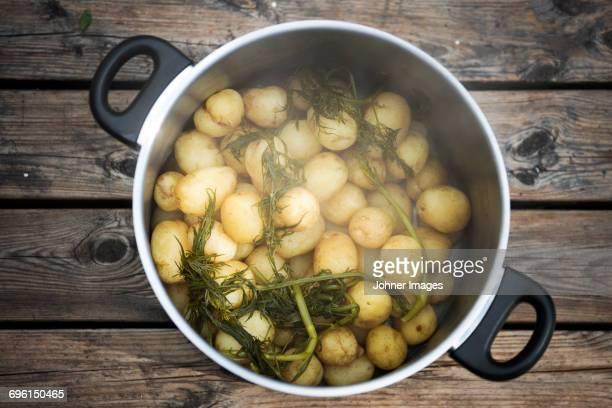 Boiled potatoes in saucepan