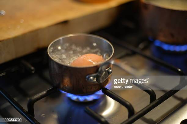 boiling an egg on gas stove - egg stock pictures, royalty-free photos & images