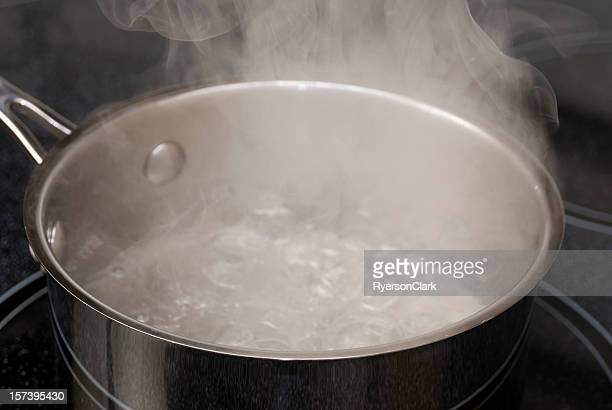Boiling Water in a Stainless Steel Pot.