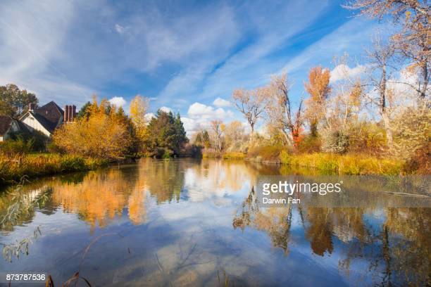 boise greenbelt fall - boise idaho stock pictures, royalty-free photos & images