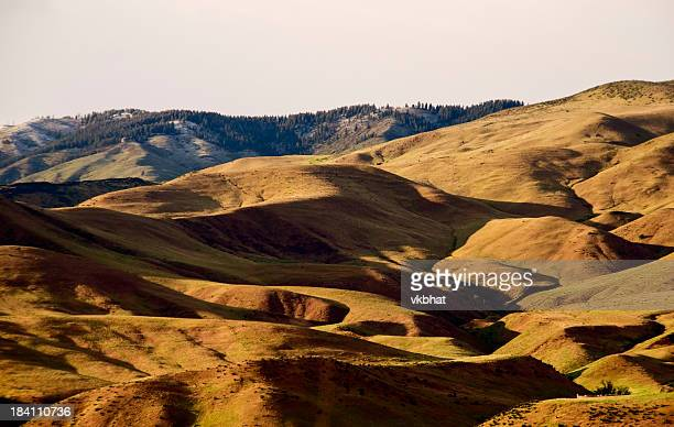 Boise hills