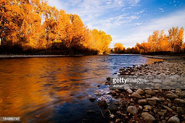boise river autumn - idaho stock pictures, royalty-free photos & images