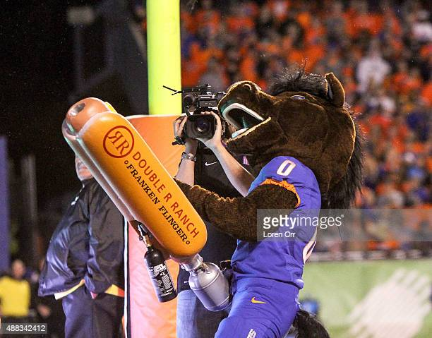 Boise State Bronco mascot Buster Bronco shooting tshirts to the fans during second half action against the Washington Huskies on September 4 2015 at...