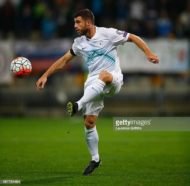 Bojan Jokic of Slovenia in action during the UEFA EURO 2016 qualifier playoff second leg match between Slovenia and Ukraine at Ljudski Vrt Stadium on...