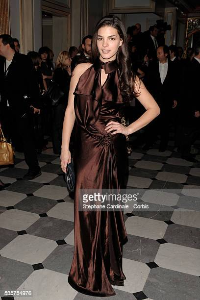 Bojana Panic attends the 7th annual Sidaction fashion fundraising dinner to fight AIDS in Paris