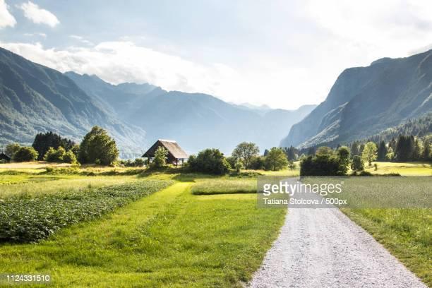 bojinjsko jazero - slovenia stock pictures, royalty-free photos & images