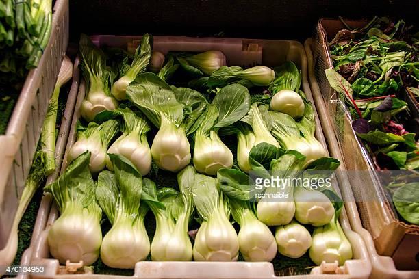 bok choy - fresh vegetables - 白梗菜 ストックフォトと画像