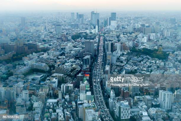 Bokeh aerial view of Tokyo skyline with skyscapers and Mt.Fuji at dusk.