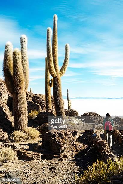 Bolivia, Atacama, Altiplano, Salar de Uyuni, Woman walking among the cactus, Incahuasi island