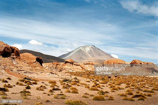 bolivia, cordillera de lipez, volcano in the distance - boris stock photos and pictures